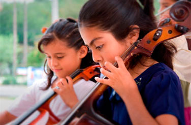 Violin, Cello, Viola Lessons Tampa